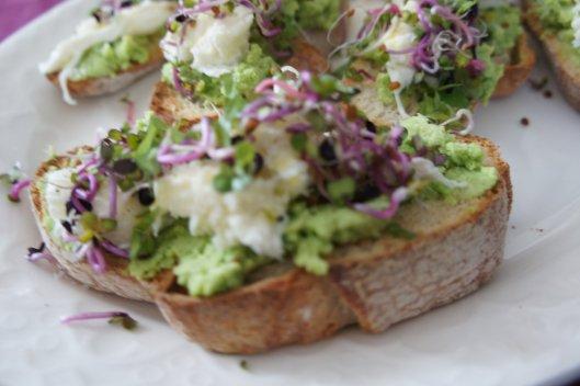 Apéritif : crostini à la purée de fèves concassés, pousses de radis, mozzarella, fleur de sel, poivre et un filet d'huile d'olive...