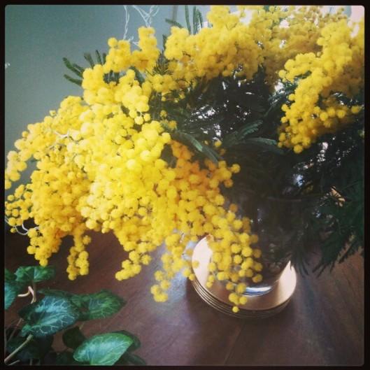 Le sapin est plié dans sa boîte... pour fêter le mois de février, une maison propre et épurée, les  mille soleils d'un mimosa....