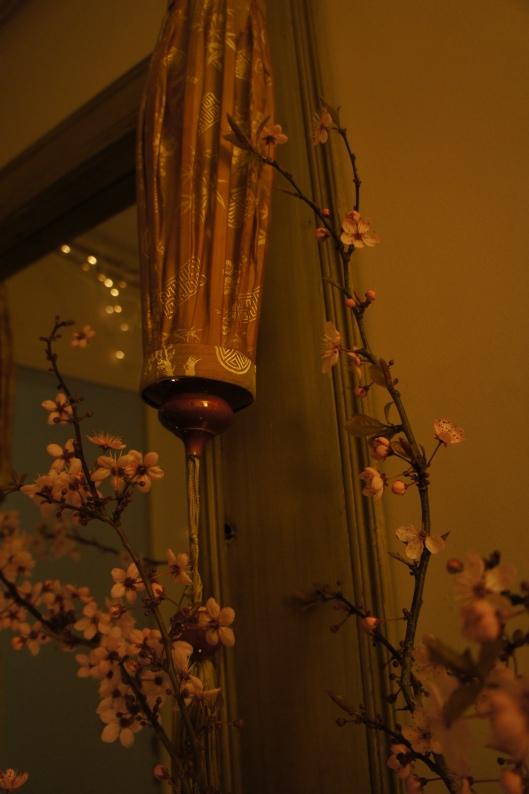 ...les fleurs de cerisier grimpent...