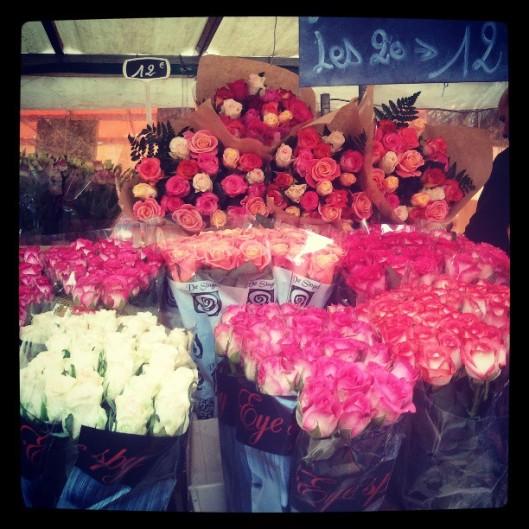 Rose.... la fleur éternelle...