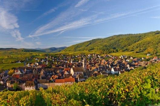 Route des vins d'Alsace ©